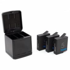 Зарядка для 3 х аккумуляторов экшн-камеры + бокс для переноски, Telesin